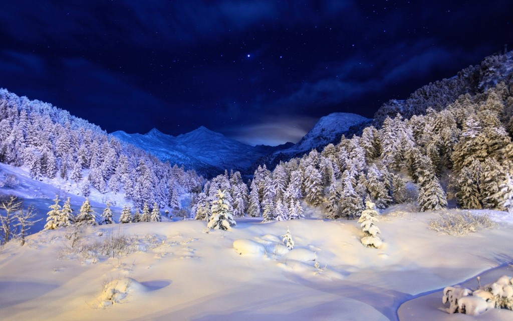 iarna 2