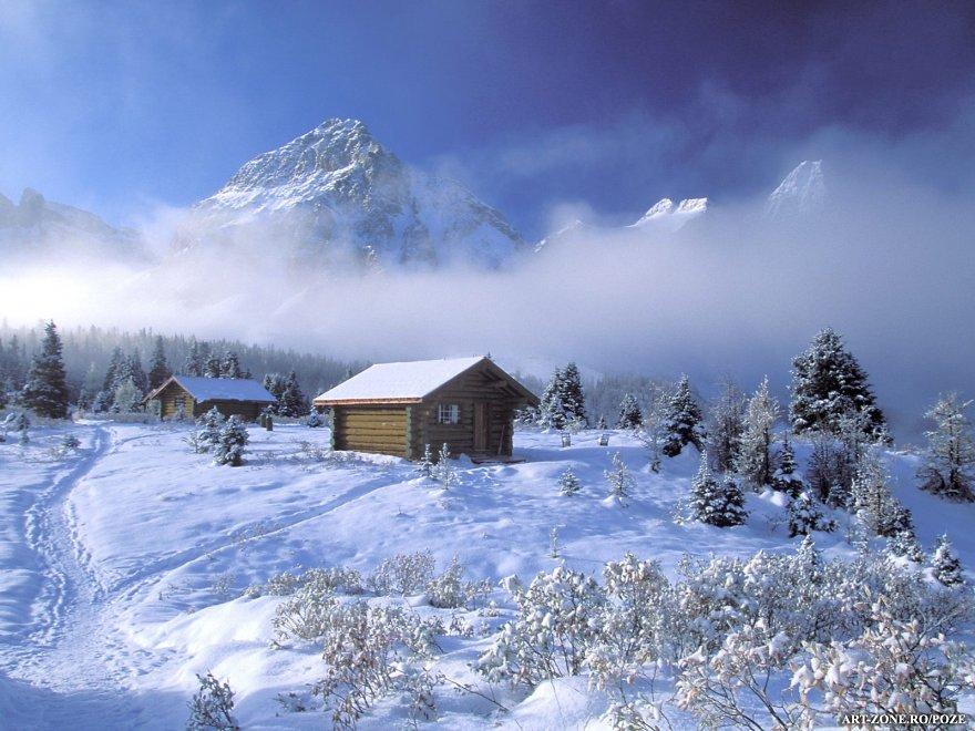 iarna 3