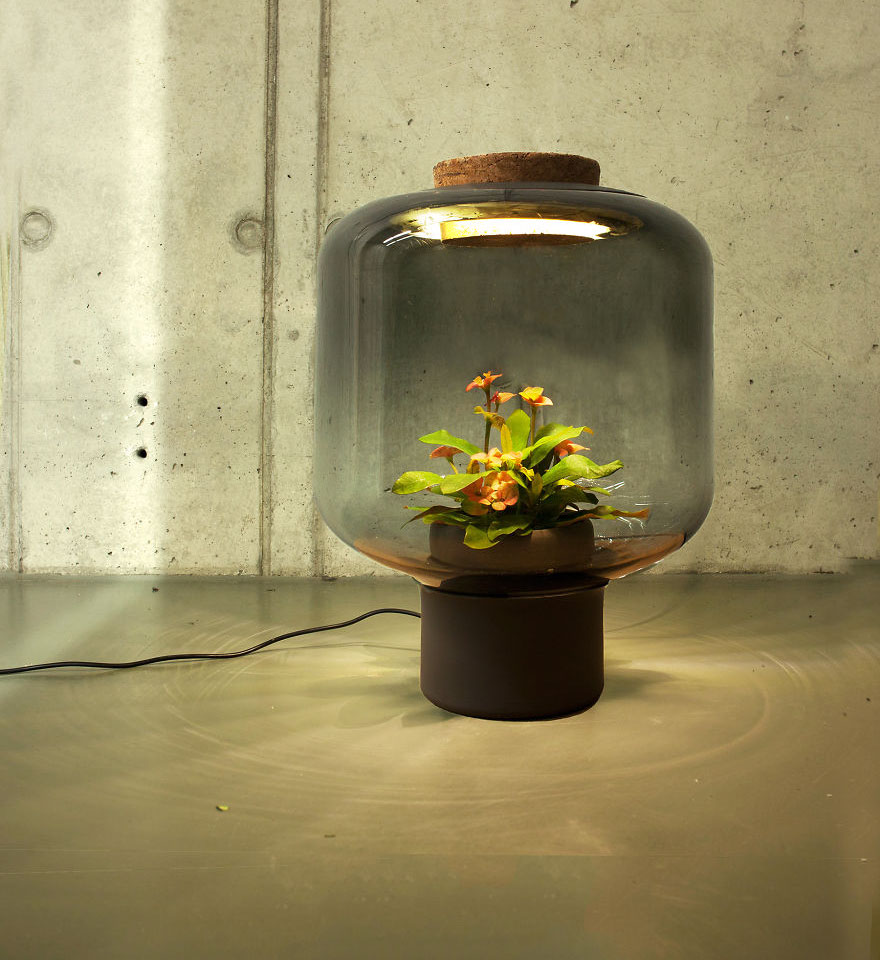 We-designed-these-lamps-to-grow-plants-in-windowless-spaces_1