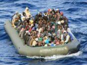 migranti 7