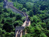 impadurire, China