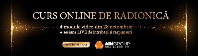 AIM radionica curs online